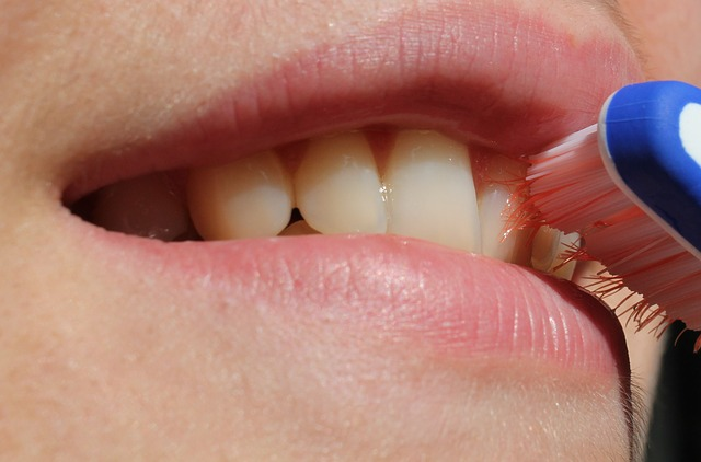 toothbrush-2696810_640